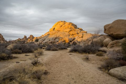 Hidden Valley Camp Ground, Joshua Tree National Park