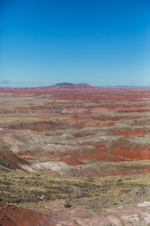Petrified Forest National Park, Arizona